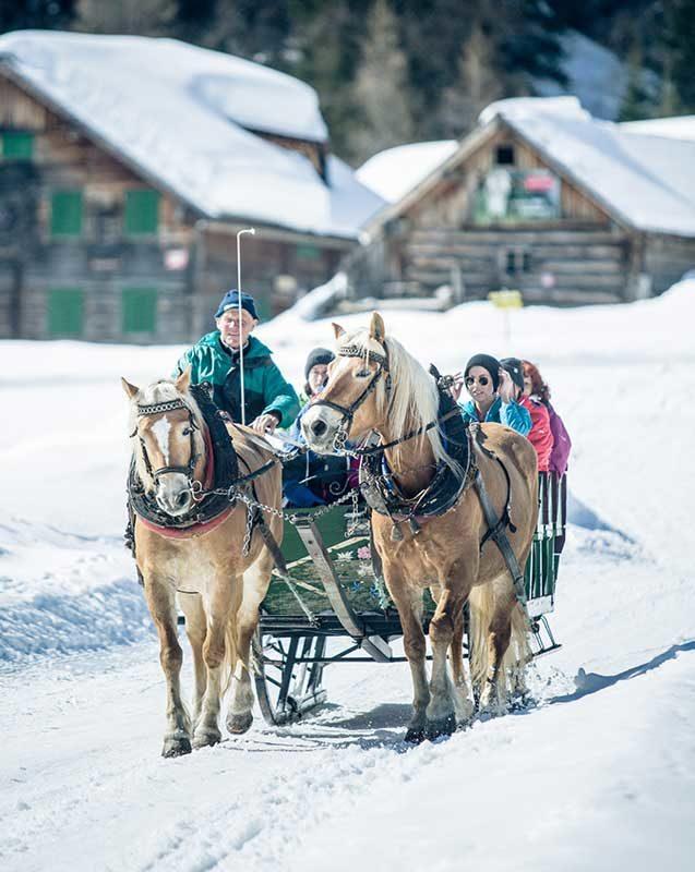 Pferdekutsche Gnadenalm Winterlandschaft