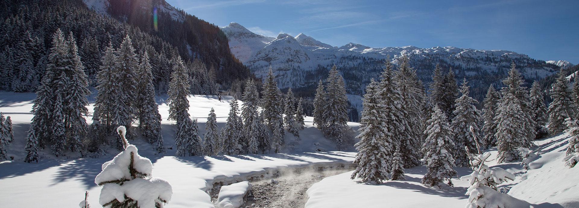 Winterlandschaft auf der Gnadenalm